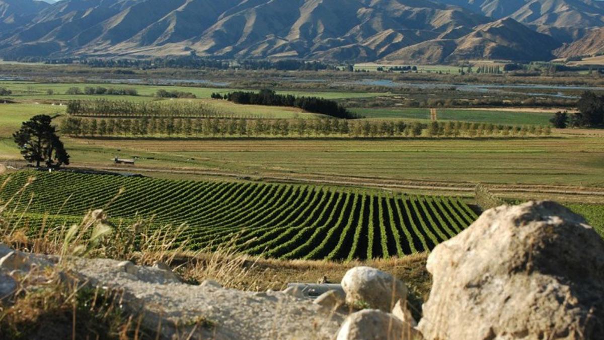 Waitaki, la región secreta del vino en Nueva Zelanda
