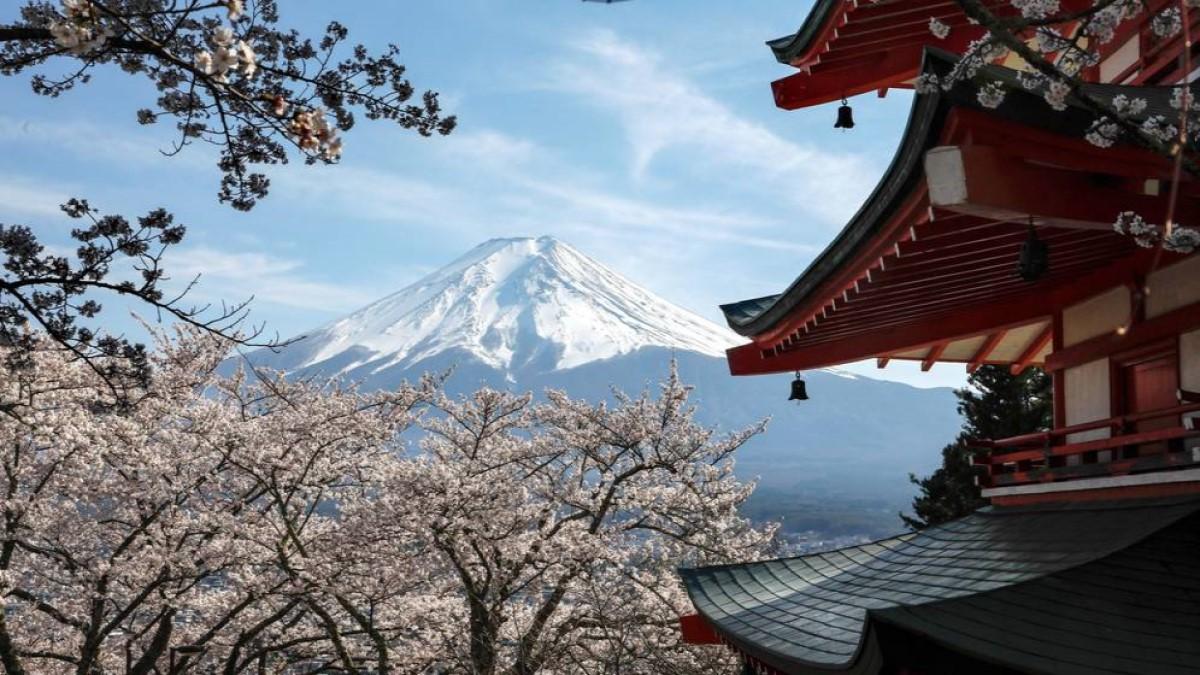 Japón podría pagar a los turistas para que visiten el país este verano