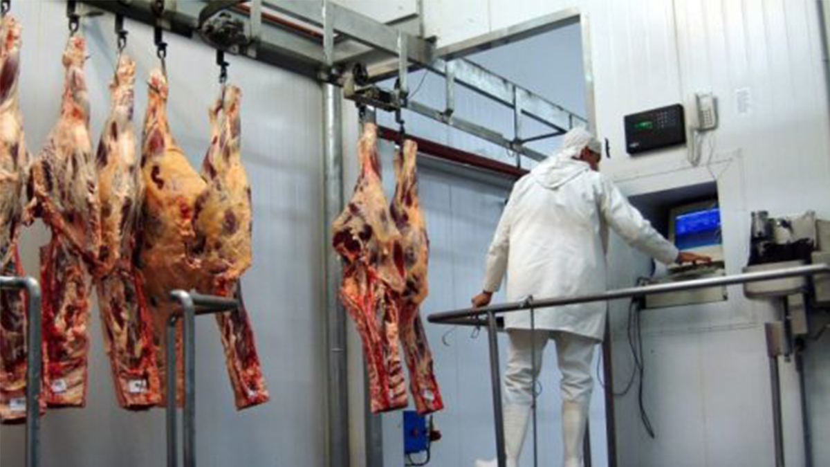 Exportación de carnes en buena perspectiva