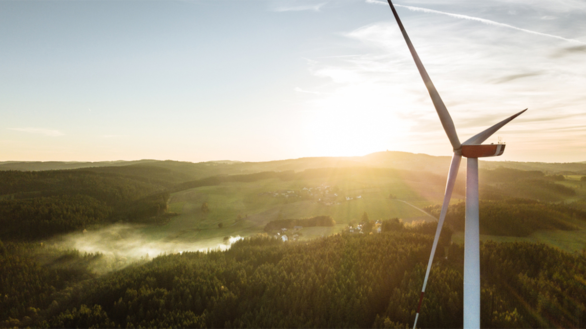 Redefiniendo el futuro de la energía post pandemia: transición energética y generación de empleos