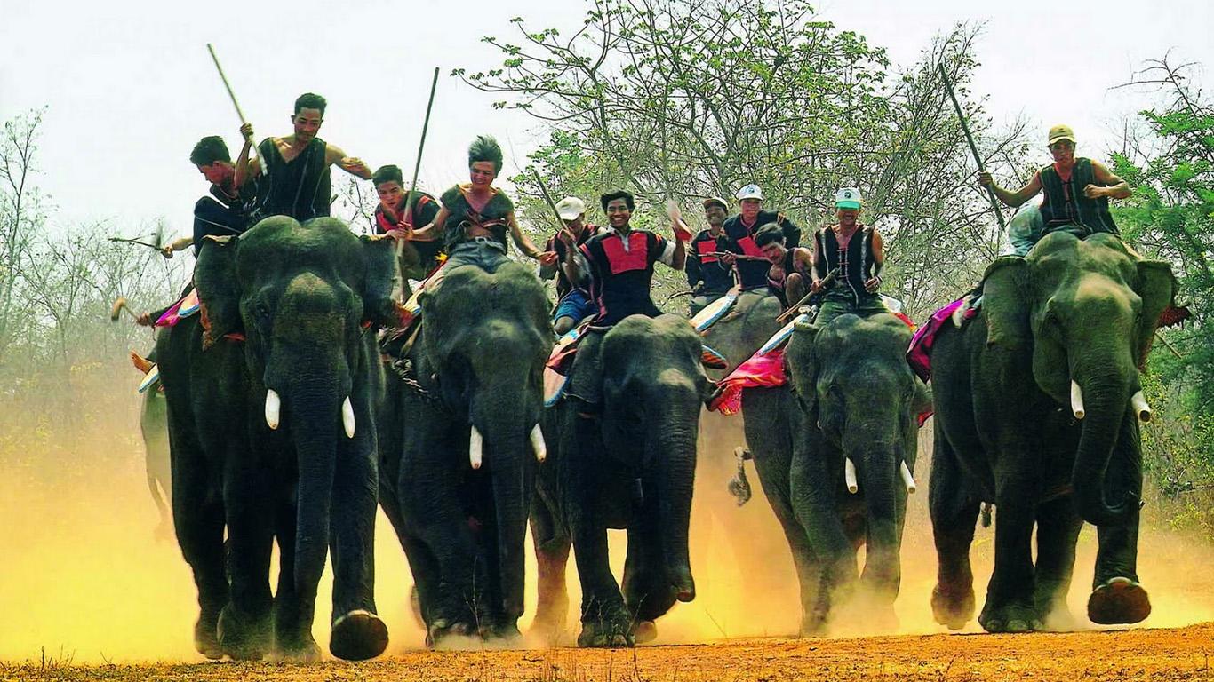 carrera de los elefantes en Tay Nguyen