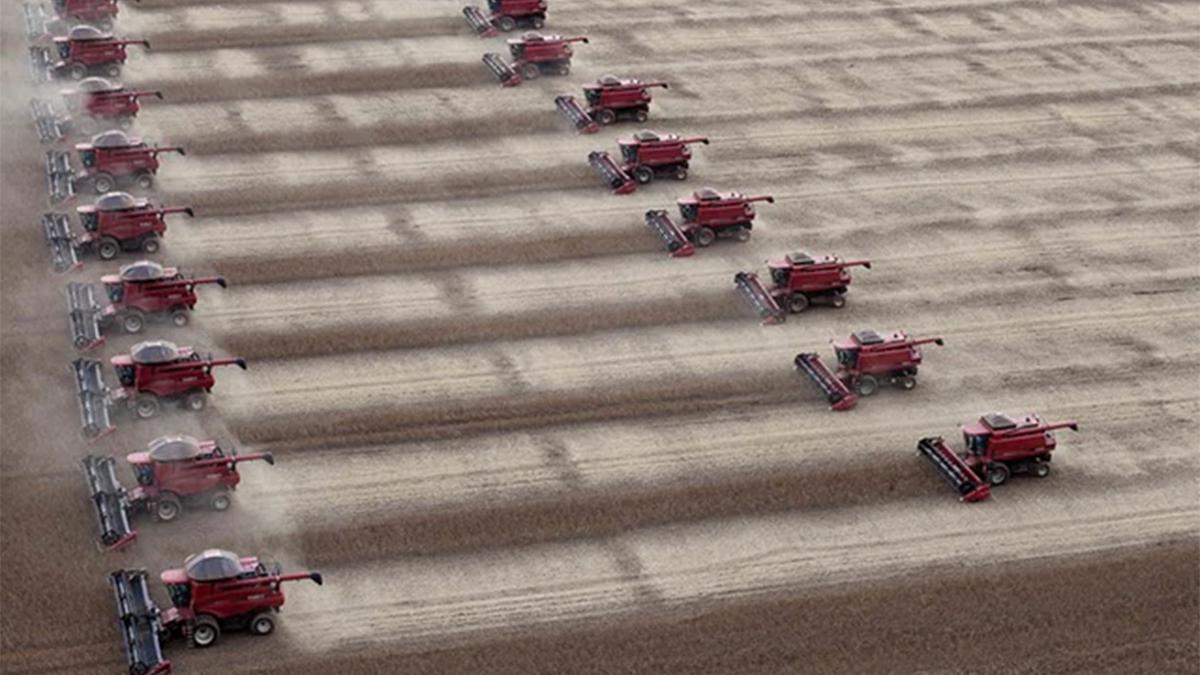 China y como afecta su política alimentaria