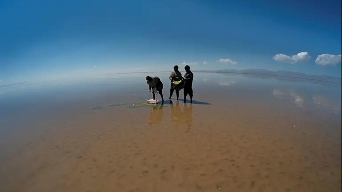 Pescadores en el lago Poopó, en septiembre de 2017, antes que el segundo lago más grande de Bolivia se secara. Foto: Reuters