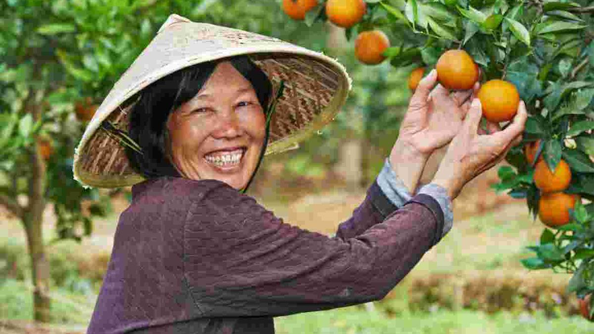 El campo en China necesita a campesinos profesionales
