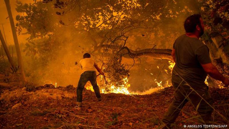 Clima extremo en Grecia produce incendios en Eubea