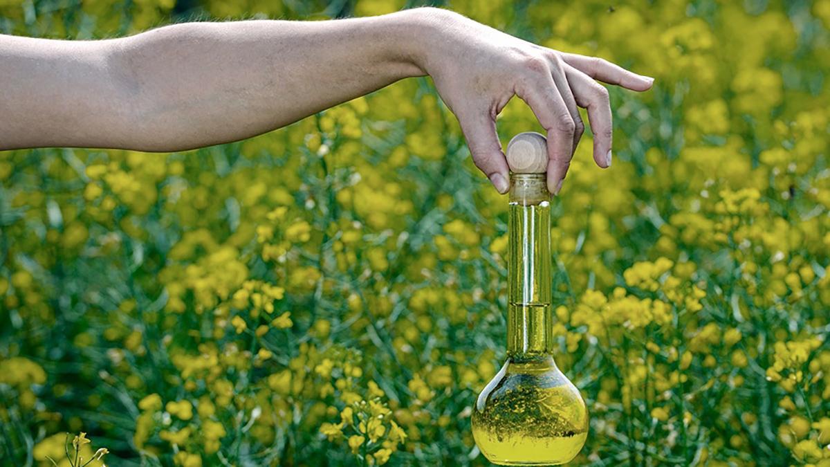 En 2018 el Departamento de Comercio de Estados Unidos aplicó duros aranceles al biodiésel argentino.