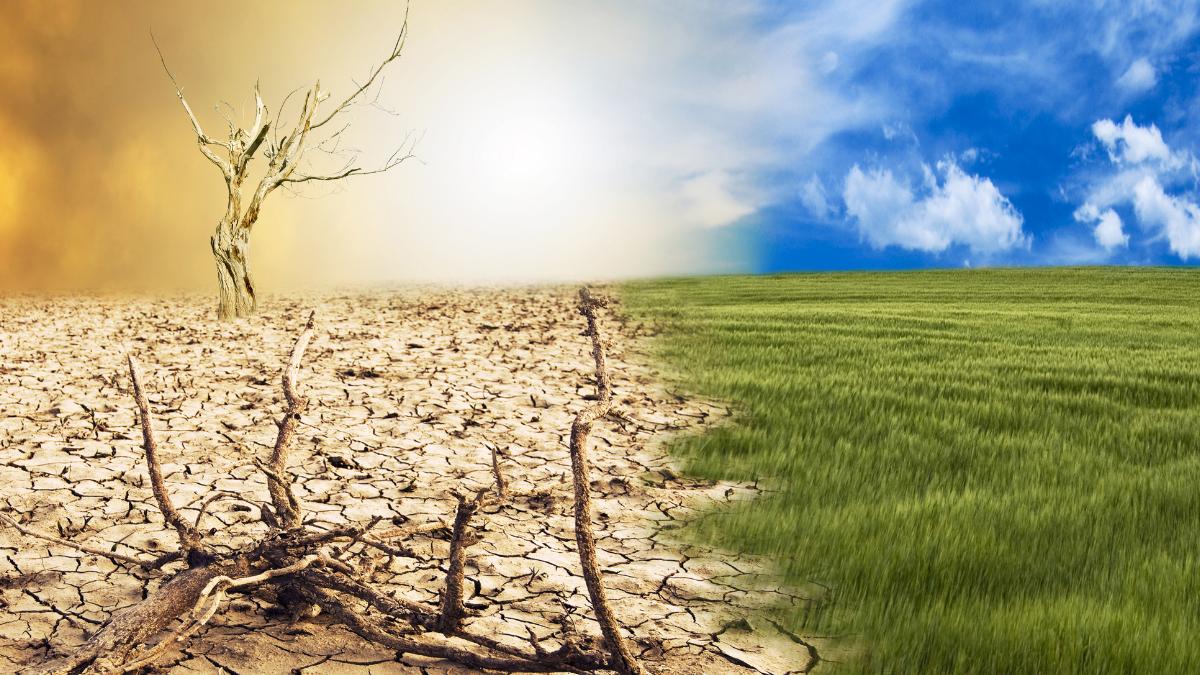 El cambio climático y su nefasta consecuencia en la salud